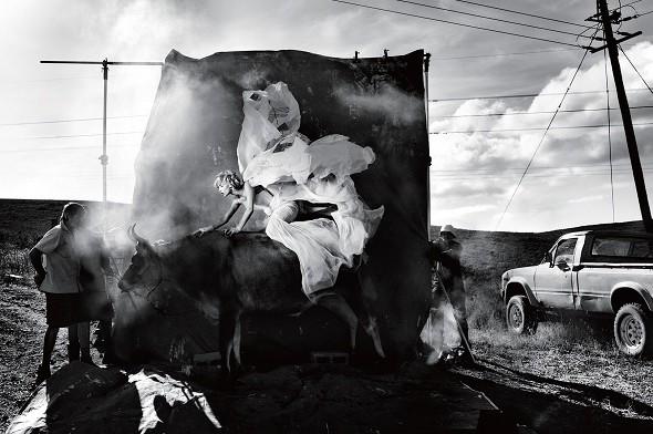 Kristian Schuller  描繪生命旅程的盛大馬戲團